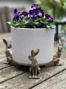 Hare Pot Stand - Set of Three - Abigailshome