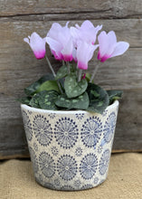 Load image into Gallery viewer, Old Style Dutch Floral Pots - Blue - Abigailshome