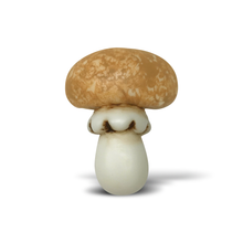 Load image into Gallery viewer, Mushroom 3D Poly Pin