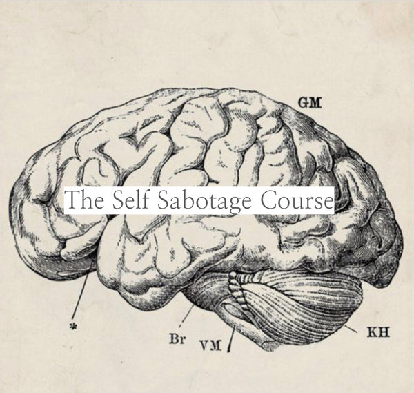 Self Sabotage Course