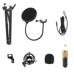 Professional Microphone Condenser Microphone for Video Recording Karaoke Radio Studio Microphone With  Anti-Shock Mount