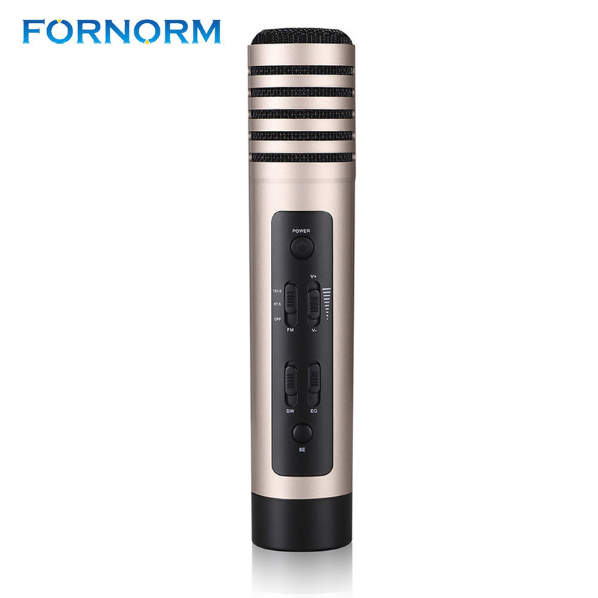 FORNORM Mini Microphone Stereo Karaoke Microphone Moving-Coil Live Streaming Handheld Wired Karaoke Micrphfone Speaker KTV Home