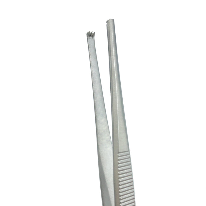 "Tissue Forceps, 5.5"" (14cm), Straight, 2x3 Teeth"