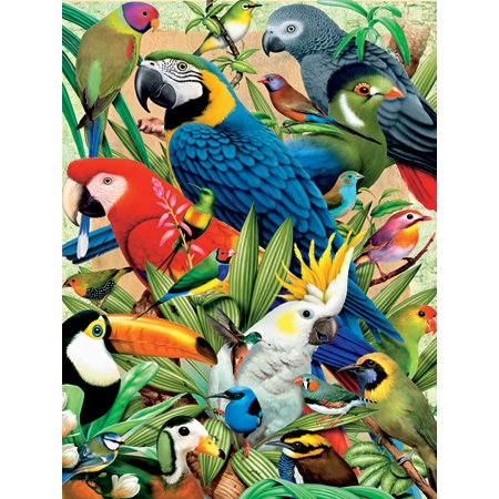 Fx Schmid Avian World Puzzle, 300Pc