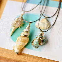 SEASHELL & BELL Gold Coated Seashell Necklace