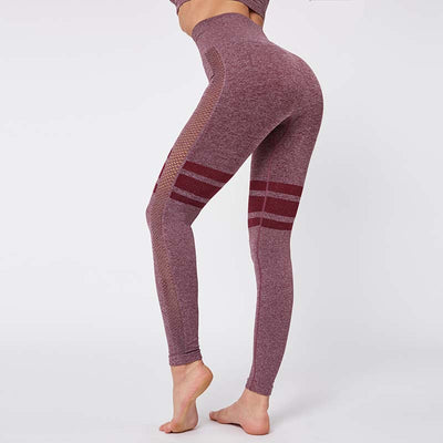 Gym Mesh Breathable Seamless Pants-Wine Red