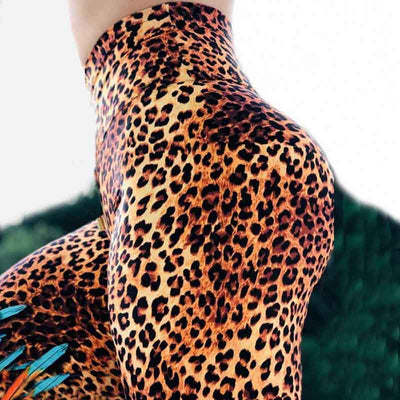 Sexy Leopard Leggings Feather Print