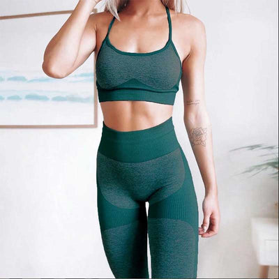 Women Workout Seamless 2 Pieces Set