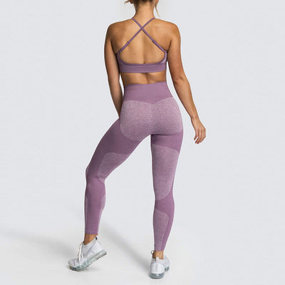 Women Fitness Seamless 2 Pieces Set -Purple