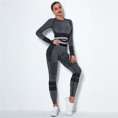 Ombre Seamless Sports Set Fitness Sports Suits Gym Clothes Fitness Long Sleeve Shirts High Waist Running Leggings Workout Sets -Dark Gray