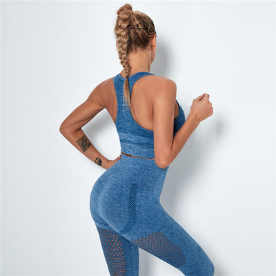 Women's Seamless Clothing Gym Set- Blue