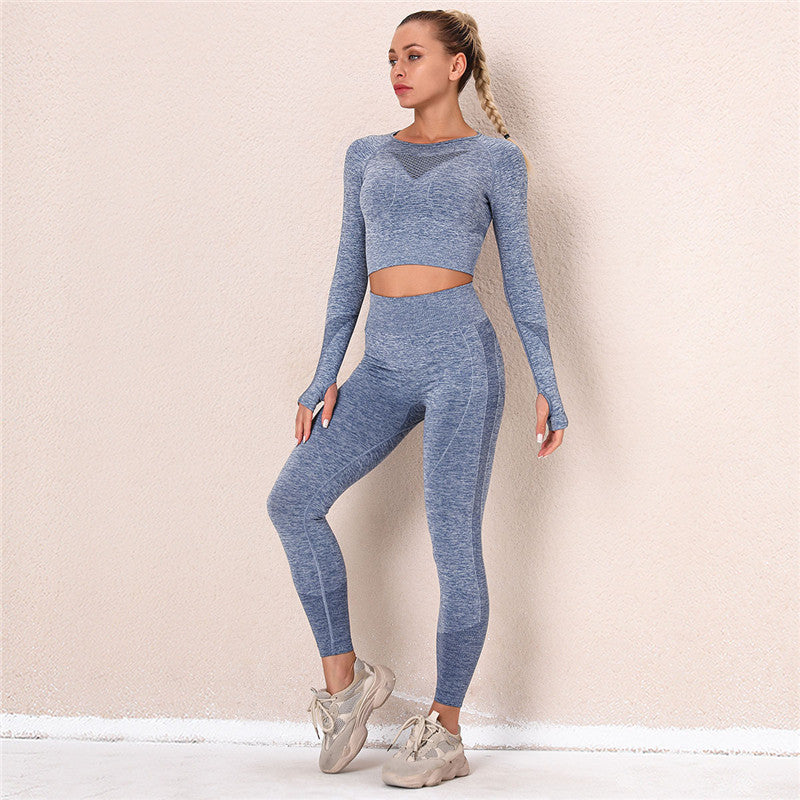 Seamless Sets Women Gym Fitness Clothing Sports Wear Female Workout High Waist Leggings&Long Sleeve Top Suit Tracksuit -Blue Gray