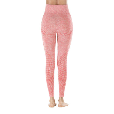 Yoga Sporting Seamless Leggings