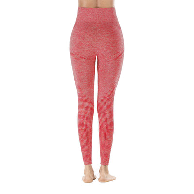 Workout Sporting Seamless Leggings - Red