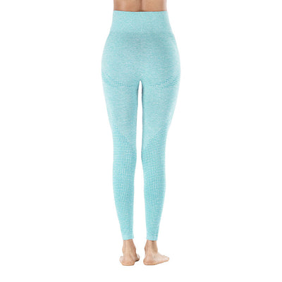 Workout Sporting Seamless Leggings - Sky Blue