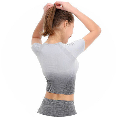 Seamless Yoga Short Sleeve Crop Top - Gray