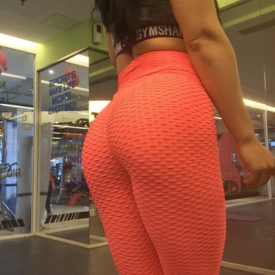 Women Workout Sports Pants - Orange