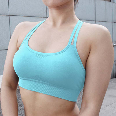 Push Up Seamless Sports Bra - Lake Blue