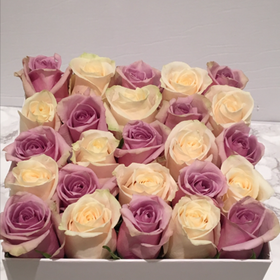 Mix of White & Purple Rose Box - 25 Roses