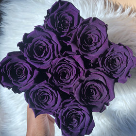Real Roses that Last 2-3 Years! Deep Purple Roses