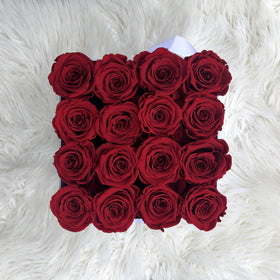 Real Roses That Last 2-3 Year - Large Size