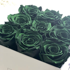Real Roses That Last 2-3 years! Emerald Green
