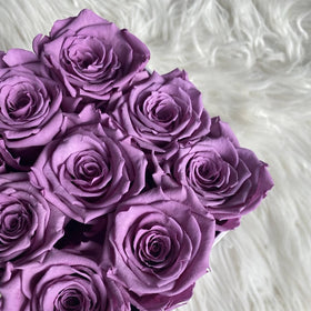 Real Roses That Last 2-3 Years! Light Purple