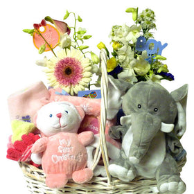 A Bundle of Joy Basket
