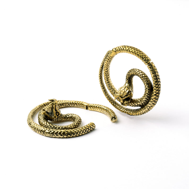 products/BrassSnakeEarWeights_3.jpg
