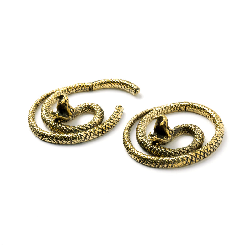 products/BrassSnakeEarWeights_4.jpg