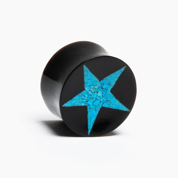 Horn And Turquoise Star Plug