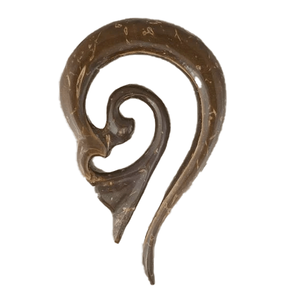 products/Ear_Shape_Solid_Hook_Coconut_52a25039-bab1-4f5f-8c85-88c32430c2ae.png