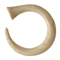 Fossilised Mammoth Ivory Curving Hook