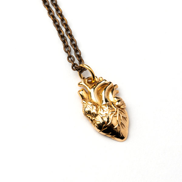 Anatomic Bronze Heart Charm Necklace