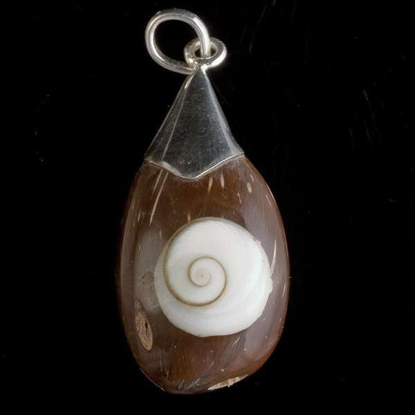 Coconut Shiva Eye Shell Pendant hanging from Silver Top - Tribu