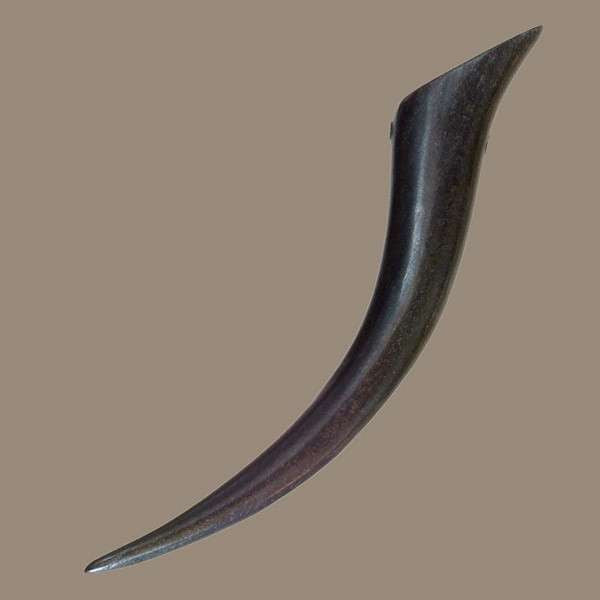 Curved Spiky Horn Pendant - Tribu