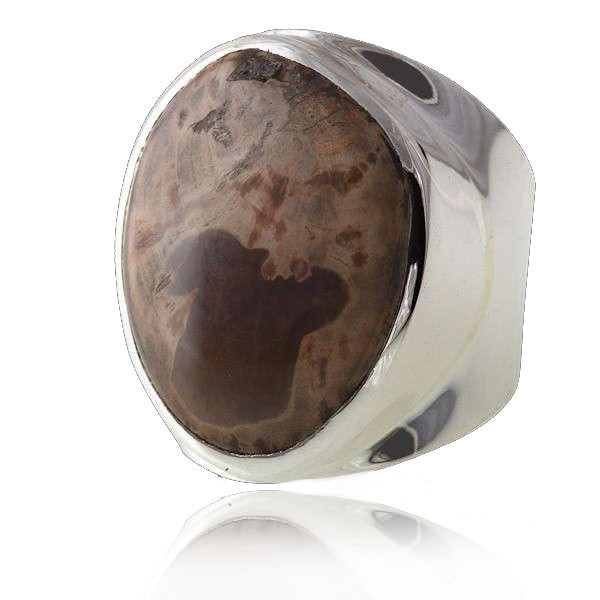 Silver Ring With Fossilised Wood