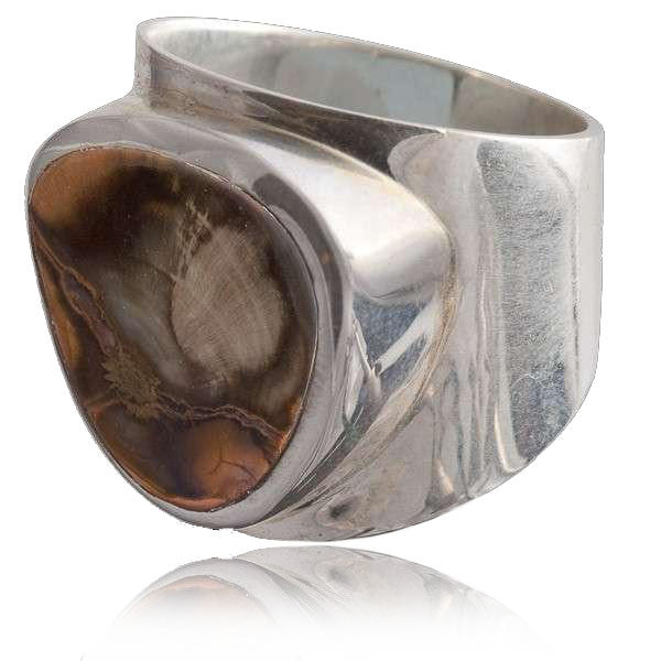 Silver and Fossil Ring