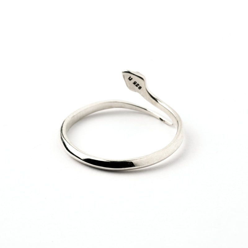 products/SnakeofEdenSilverRing_4.jpg