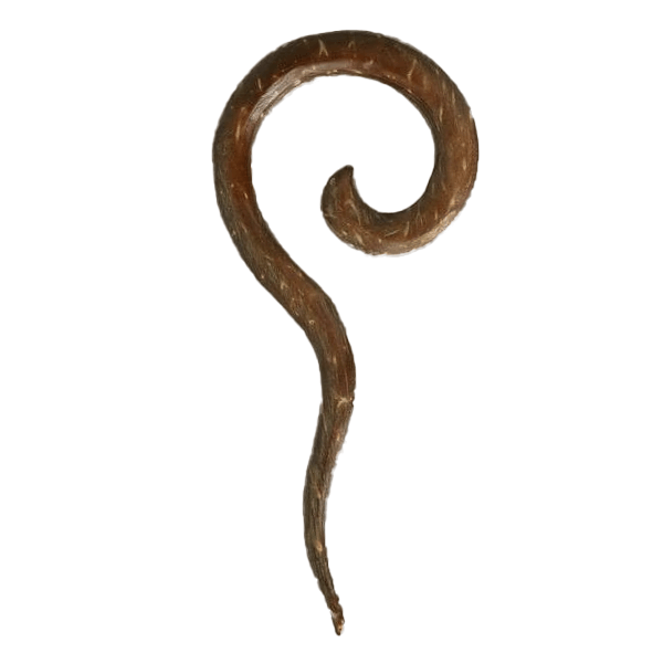 products/Solid_Tribal_Hook_Long_Spiral.png