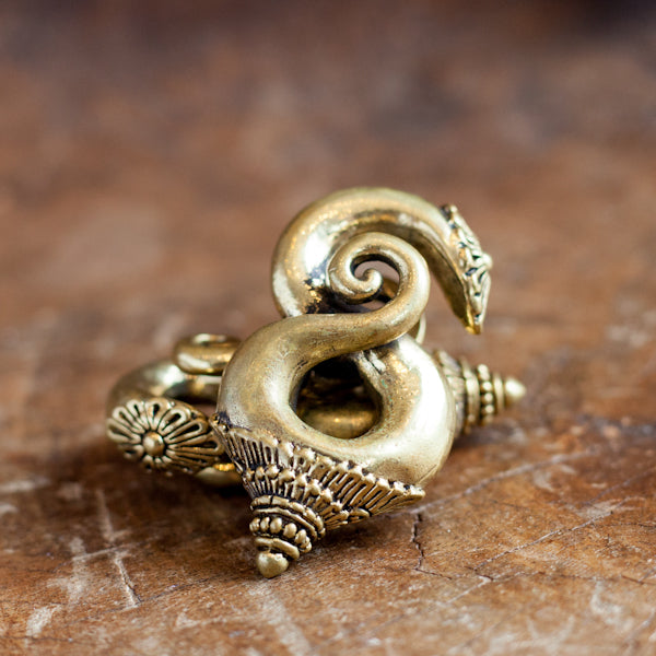 Spiraling Brass Ear Weights