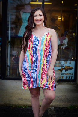 Rainbow Zebra Dress