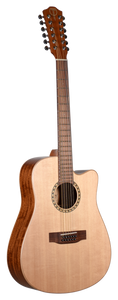 Guitars & Ukuleles - Fretted Acoustic & Electric Instruments