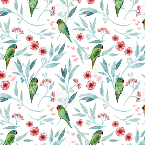 Swift Parrots White - Quilting Cotton [1yd]