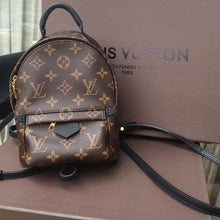 Load image into Gallery viewer, LOUIS VUITTON PALM SPRINGS BACKPACK MINI