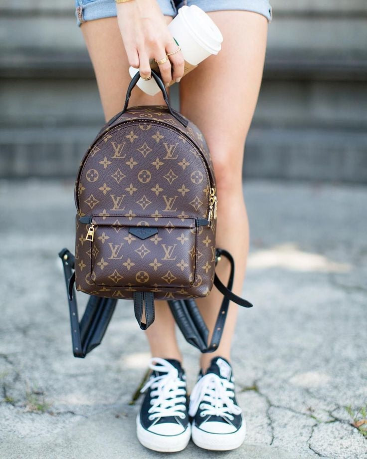 LOUIS VUITTON PALM SPRINGS BACKPACK MINI - Boss Ladies