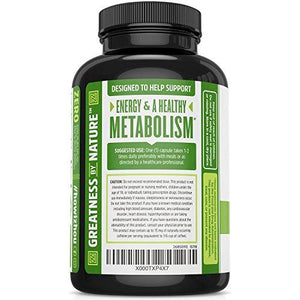 Green Tea Extract Supplement with EGCG for Healthy Weight Support- Metabolism, Energy and Healthy Heart Formula - Gentle Caffeine Source - Antioxidant & Free Radical Scavenger - 120 Veggie Capsules - Augment Hub