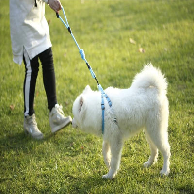 Dog Leash Nylon Pet Leash for Dog & Cat Running Training Collar and Harness