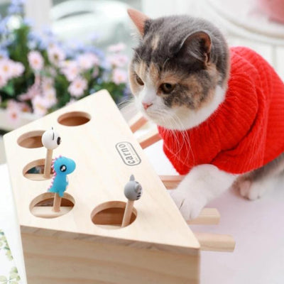 Cat Interactive Pet Cat Toy Play Catch Toy