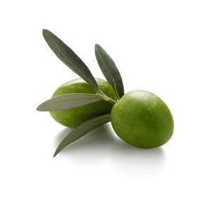 Green olives from a variety of Chondrolia in Chalkidiki a region in Northern Greece. | Parnon Estates